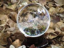 Sfera di cristallo sui fogli Fotografia Stock
