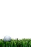 Sfera di golf bianca in erba verde immagine stock