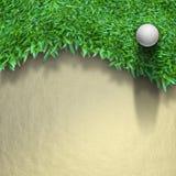 Sfera di golf bianca su erba verde Immagini Stock Libere da Diritti