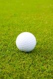 Sfera di golf bianca su verde Fotografia Stock