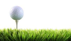 Sfera di golf con il T nell'erba Immagini Stock Libere da Diritti