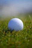 Sfera di golf in erba fotografia stock libera da diritti