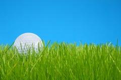 Sfera di golf in erba Fotografia Stock