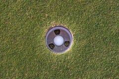 Sfera di golf in foro Immagine Stock Libera da Diritti