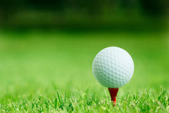 Sfera di golf nel colpo di grass immagini stock