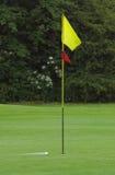 Sfera di golf nel movimento Fotografie Stock