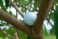 Sfera di golf nel tre Fotografie Stock Libere da Diritti