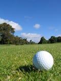 Sfera di golf su erba 2 Fotografie Stock Libere da Diritti
