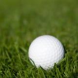 Sfera di golf su erba verde Immagine Stock Libera da Diritti