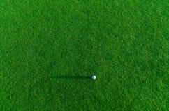 Sfera di golf su un'erba Fotografie Stock Libere da Diritti