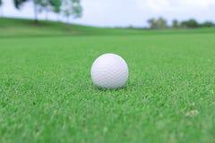 Sfera di golf su un verde Immagine Stock