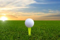 Sfera di golf su verde Fotografie Stock Libere da Diritti