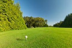 Sfera di golf sul corso perfetto Fotografie Stock Libere da Diritti