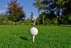 Sfera di golf sul T Immagine Stock Libera da Diritti