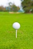 Sfera di golf sul T. Fotografie Stock