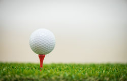 Sfera di golf sul T Immagini Stock Libere da Diritti