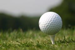 Sfera di golf sul T (terreno da golf reale) fotografia stock