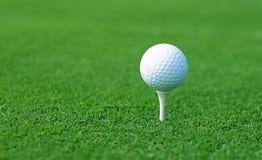 Sfera di golf sulla posizione di inizio Fotografie Stock Libere da Diritti