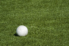 Sfera di Lacrosse sul campo del tappeto erboso. Immagine Stock