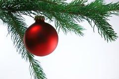 Sfera di natale sull'albero, priorità bassa bianca Fotografie Stock Libere da Diritti