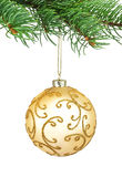 Sfera dorata di natale dell'ornamento in un albero di abete Immagini Stock