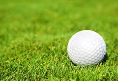 Sfera per un golf fotografie stock