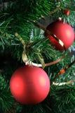 Sfere rosse che pendono dall'albero di Natale Immagine Stock Libera da Diritti