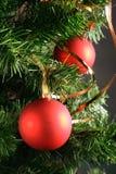 Sfere rosse che pendono dall'albero di Natale Fotografie Stock