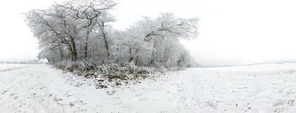 Sferisch Panorama van de Duitse Winter Stock Afbeelding
