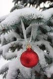 sfery błękitny futerkowy czerwony drzewo Obrazy Royalty Free