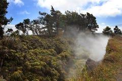 Sfiati vulcanici del vapore Immagine Stock