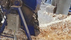 Sfibratore di legno, produttore di elasticità dei trucioli di legno video d archivio