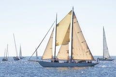 Sfida classica 2010 degli yacht di Panerai - Imperia Immagine Stock