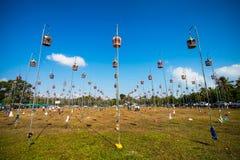Sfida della colomba dell'asiatico Immagine Stock Libera da Diritti