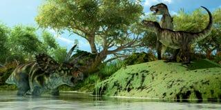 Sfida di T-Rex Fotografia Stock Libera da Diritti