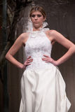 Sfilata di moda dei vestiti da cerimonia nuziale Immagini Stock