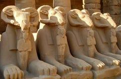 Sfingi dalla testa RAM in tempio di Karnak Fotografie Stock Libere da Diritti