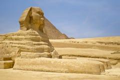 Sfinks Egipt Kair Obrazy Stock