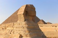 Sfinks, Giza Obraz Stock