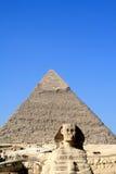 SFINKS GIZA W EGIPT Obrazy Stock