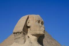 SFINKS GIZA W EGIPT Obraz Stock