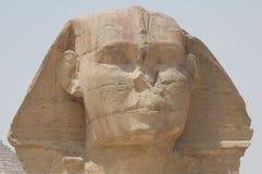 Sfinks Giza zdjęcie royalty free