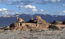Sfinks-piedra Fotografía de archivo