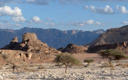 Sfinks-piedra Foto de archivo libre de regalías