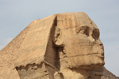 Sfinks przy Giza i ostrosłupem Fotografia Stock