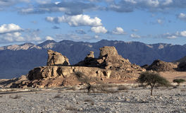 Sfinks-stenen Stock Fotografie