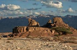 Sfinks-stenen Royalty-vrije Stock Afbeelding