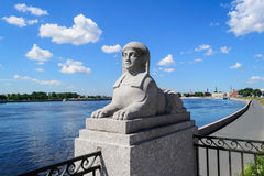 Sfinksy w St Petersburg Zdjęcia Stock