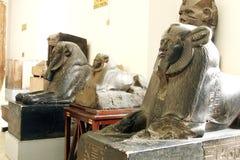 Sfinx av Amenemhat III på det egyptiska museet i cairo i Egypten Arkivbilder