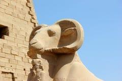 Sfinx bij de Tempel Karnak. Stock Fotografie